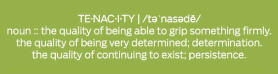 TenacityDefinition